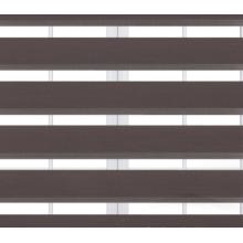 Окрашенная равнина тени занавеса ролика зебры