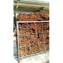 Chinese Guangxi Cinnamon Cassia Stick