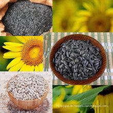 Innere Mongolei Hohe Qualität Bäckerei Sonnenblumenkerne Kerne