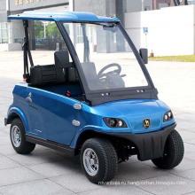 Одобренный CE 2 человек Электрический мини-автомобиль (ДГ-LSV2)
