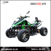 250cc EEC Racing Quad / EEC ATV with 12inch Wheel