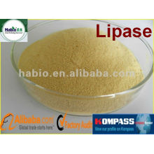 High efficient!! Lipase enzyme for meat