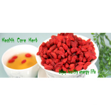 Distribuidor al por mayor a granel secado natural goji berry
