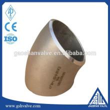 Coude de tube de rayon long de 45 degrés en acier inoxydable
