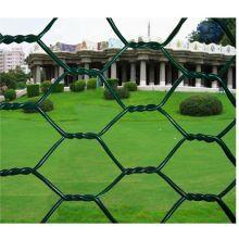 PVC revestido Hexagonal Wire Mesh