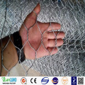 Anping Galvanized Hexagonal Chicken Wire Mesh