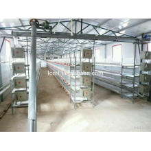 Automatic Broiler cage poultry equipment form Professional manufacturer