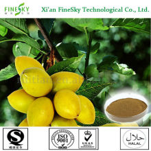 100% natural olive leaf plant extract as nutraceutical