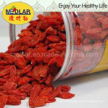 Medlar Best Selling Polysaccharide Wolfberry