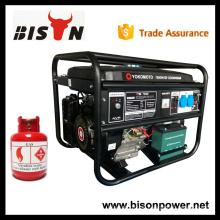 BISON China Taizhou Fabrik Preis LPG Gas Generatoren China 4kw 4 kva Gas Engine Generator Preis zum Verkauf