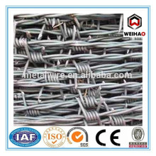barb wire fence/barbed wire fencing