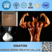 Pure best bodybuilding supplements pure creatine monohydrate on human body