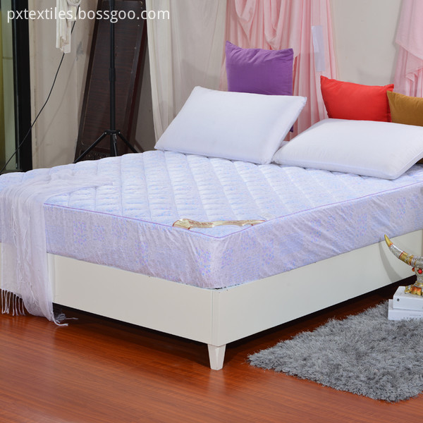 Matress Protector for Home