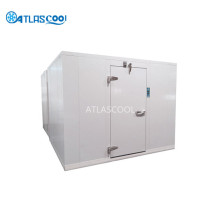 Walk in Cold Room Freezer Cold Room Storage