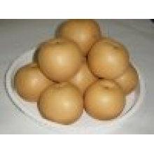 Chinese fresh fengshui pear
