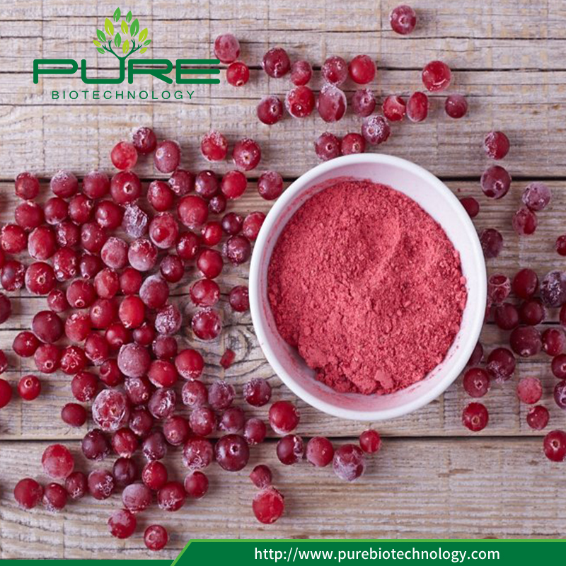 Natural Cranberry Extract Juice Powder1