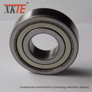 Iron Shielded 6305 ZZ Bearing For Conveyor Applications