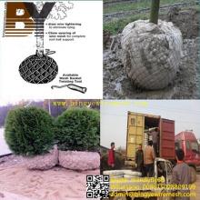 Transplante de raíz de bola Red árbol de la cesta de alambre