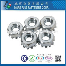 Taiwan stainless steel zinc plated toothed with Lock Washer Keps Nuts Conical Kep Nuts Conical Washer Nuts