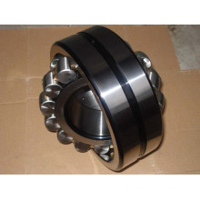 Double Seal Double-Row Cylindrical Roller Bearing SL04 5048PP