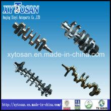Auto Engine Part for Hyundai J3 Engine Crankshaft OEM 23110-4X000