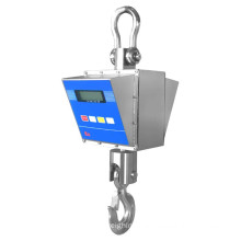 10T Explosion-proof Crane Hanging Scale