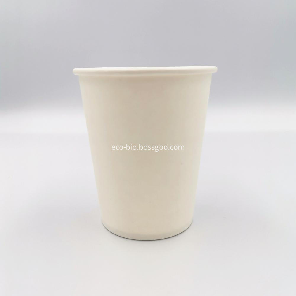 PLA Compostable Paper Cup 12oz
