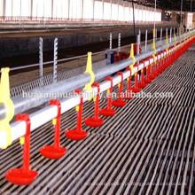 Fácil Manejo Broiler Ground Raising