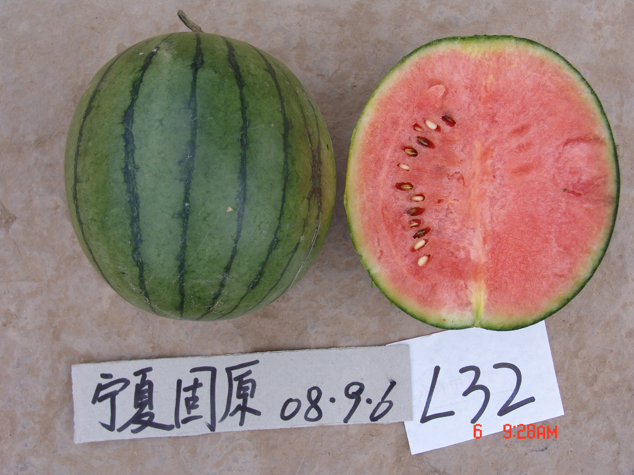 High Quality Watermelon Seeds