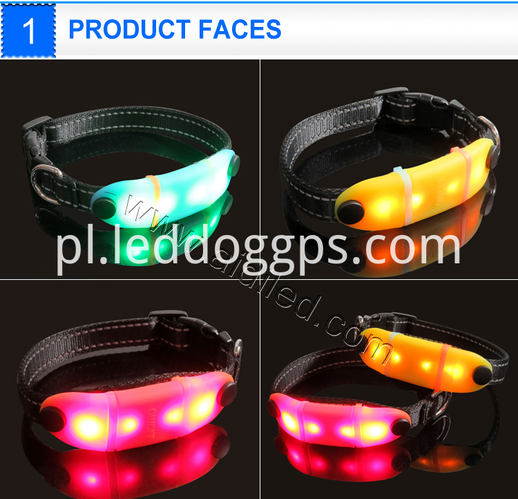 glowing pet safety collars
