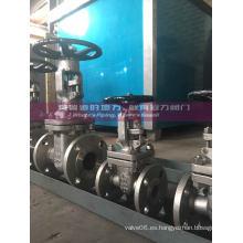 Válvula de compuerta Alloy 20 CN7M