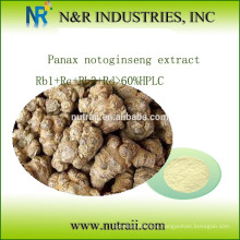 Panax notoginseng Extracto Rb1 + Rc + Rb3 + Rd> 60% HPLC
