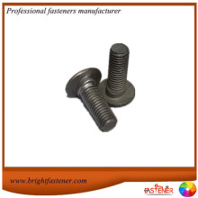 Hot Dip Galvanizing Gr.4.8 Guardrail Bolts