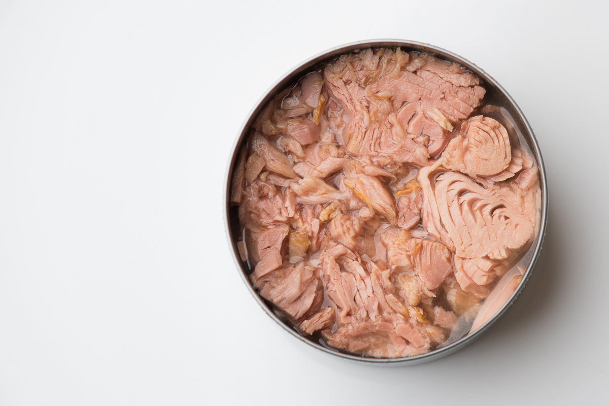 Canned Tuna Chunk in Brine