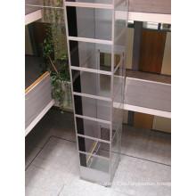 Buenos ascensores para el uso casero con el eje de cristal se pueden instalar al aire libre