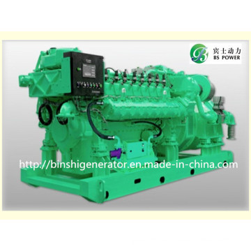 500kVA Biogas Generator Sets with Cummins Engine
