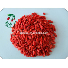 bagas de goji orgânico por grosso de fábrica, goji berry, goji seco, goji convencional, bagas vermelhas de goji