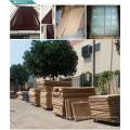 Porte de sécurité en bois solide de conception principale de porte pour la nouvelle maison / villa