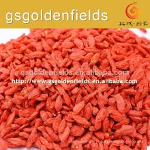 Goji baga vermelha goji orgânico nova colheita wolfberry chinês