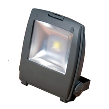 ES-60W LED Area Lights