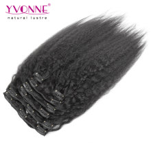 Brazilian Kinky Straight Clip in Hair Extensions Human Hair