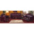 Sofá de madeira para a mobília da sala de visitas e a mobília home (D619D)