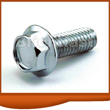 DIN6291 Hex Flange Bolt with Convex