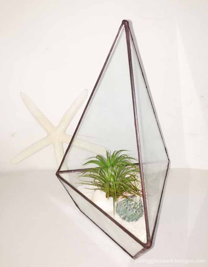 Square Glass Plant Terrarium1