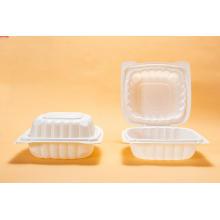 Einweg-Kunststoffverpackungsbox