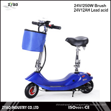 Hot Sales 2wheels 250W Motor Mini Scooter électrique