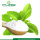Food Additivies Dried Stevia Leaf Extract Powder
