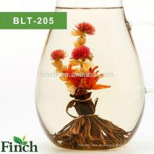 Finch venda quente, florescendo pavão chá preto espalhar sua cauda com lírio e flor de jasmim