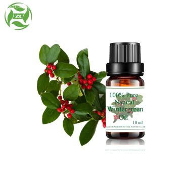 Aromathérapie en gros pure wintergreen naturel