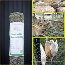 Low price Chicken hexagonal wire mesh/chicken wire fence home depot/small hole chicken wire mesh
